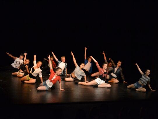 Videa z Summer Dance Performance 2015