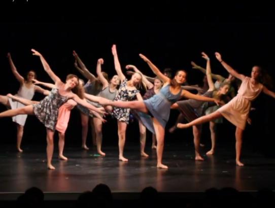 Videa ze Summer Dance Performance 10.6.2018